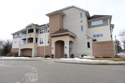 Thiensville  Condo/Townhouse Active Contingent With Offer: 213 S Main St #202