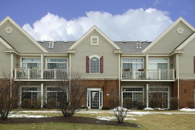 Jackson WI Condo/Townhouse Active Contingent With Offer: $116,500