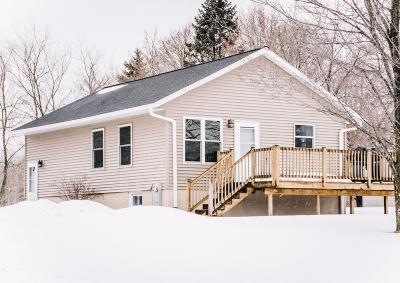 Menominee Single Family Home For Sale: N1861 Highway 41