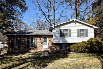 Lake Geneva Single Family Home For Sale: 711 Lagrange Dr