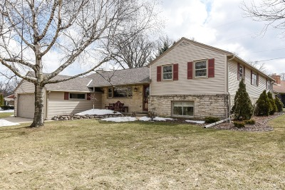 Single Family Home For Sale: 7239 Aetna Ct