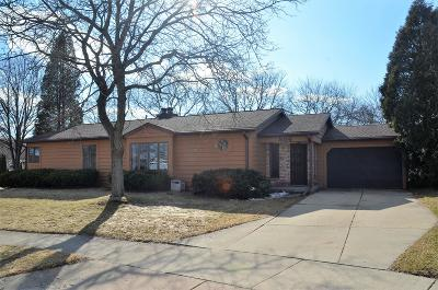 Single Family Home For Sale: 506 Mabel Ct