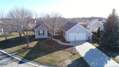 Waterford Single Family Home Active Contingent With Offer: 28689 Driftwood Ct