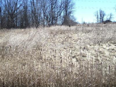 Cedarburg Residential Lots & Land For Sale: Lt10 White Oaks Ct