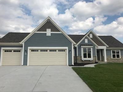 Waterford Single Family Home For Sale: 403 Fairview Cir