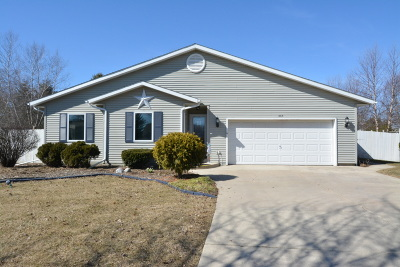 Delavan Single Family Home Active Contingent With Offer: 208 Evergreen Ct