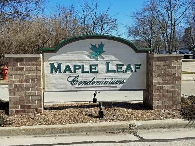 Greenfield Condo/Townhouse Active Contingent With Offer: 4936 W Maple Leaf Cir