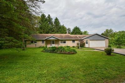 Hartland Single Family Home For Sale: 4539 Vettelson Rd