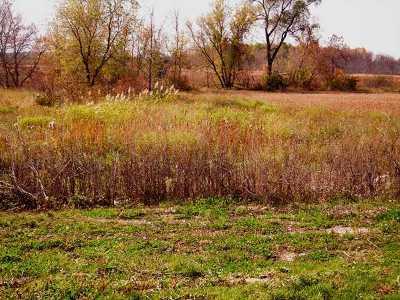 Sheboygan Residential Lots & Land For Sale: Lt13 Alyssa Ln