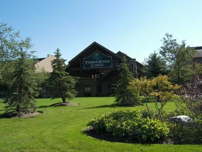 Lake Geneva Condo/Townhouse For Sale: 7020 Grand Geneva Way #101