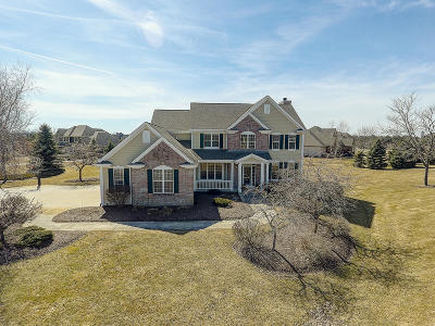 Hartland Single Family Home Active Contingent With Offer: W287n6295 Blackhawk Dr