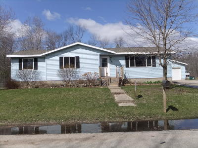 Menominee Single Family Home For Sale: 4505 7th Street