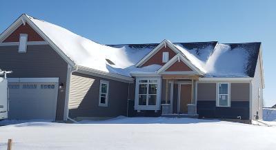 Dousman Single Family Home For Sale: 645 Bark River Way