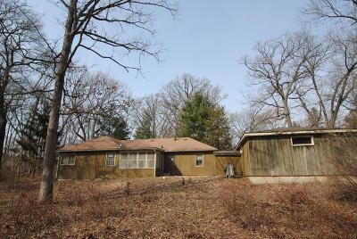 Lake Geneva Single Family Home For Sale: W3887 Gum Ct