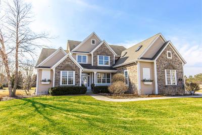 Hartland Single Family Home For Sale: 355 Westlynn Ct