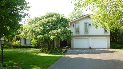 Brookfield Single Family Home Active Contingent With Offer: 14975 San Raphael Dr