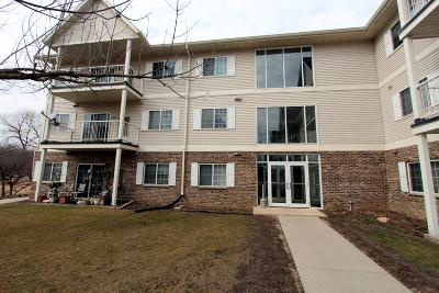 Slinger Condo/Townhouse Active Contingent With Offer: 140 W Commerce Blvd #114