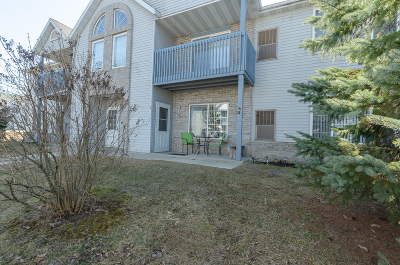 Watertown Condo/Townhouse Active Contingent With Offer: 900 Fox Creek Dr #3