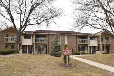 New Berlin Condo/Townhouse Active Contingent With Offer: 1633 S Carriage Ln