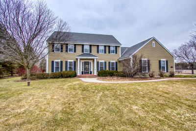 Hartland Single Family Home Active Contingent With Offer: W310n5011 Old Steeple Rd