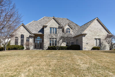 Brookfield Single Family Home For Sale: 19330 Hayden Ct