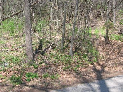 Whitewater Residential Lots & Land Active Contingent With Offer: Lt0 Deerwood Dr