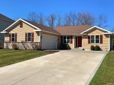 Oconomowoc Single Family Home Active Contingent With Offer: 440 Thurow Dr