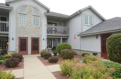 Condo/Townhouse Active Contingent With Offer: 921 Quinlan Drive #C