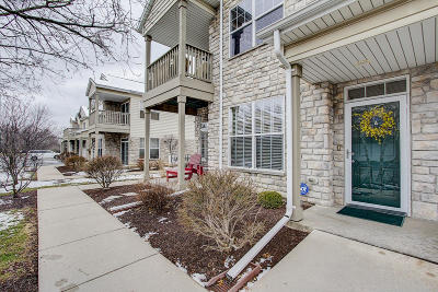 Condo/Townhouse Active Contingent With Offer: N16w26500 Meadowgrass Cir #A