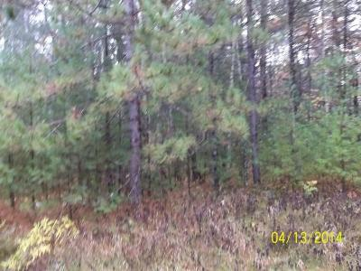 Pound Residential Lots & Land Pending: Lot 2 County Rd P