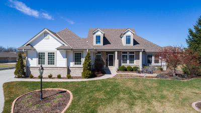 Menomonee Falls Single Family Home Active Contingent With Offer: N61w13382 Hummingbird Way