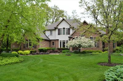 Pleasant Prairie WI Single Family Home For Sale: $975,000