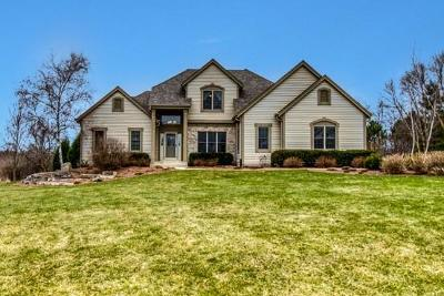 Single Family Home Active Contingent With Offer: W297s8175 Shallow Waters Cir