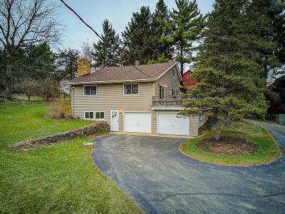 Waterloo Single Family Home Active Contingent With Offer: W8590 Blue Joint Rd
