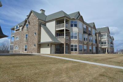 Franklin Condo/Townhouse Active Contingent With Offer: 6995 S Riverwood Blvd #308