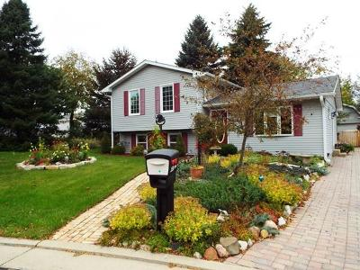 Pleasant Prairie WI Single Family Home Active Contingent With Offer: $195,000