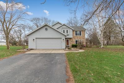Waterford Single Family Home Active Contingent With Offer: 29625 Clover Ln