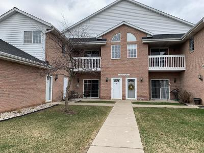 Condo/Townhouse Active Contingent With Offer: W241n2573 E Parkway Meadow Cir #1
