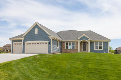 Dousman Single Family Home For Sale: 681 Twin Creeks Dr