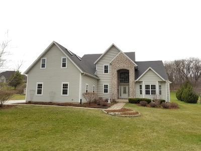 Fort Atkinson Single Family Home Active Contingent With Offer: N1665 Fairview Ln