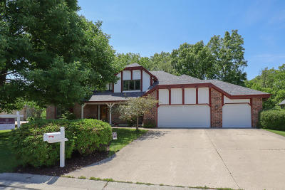 Racine Single Family Home For Sale: 3727 Canada Goose Xing