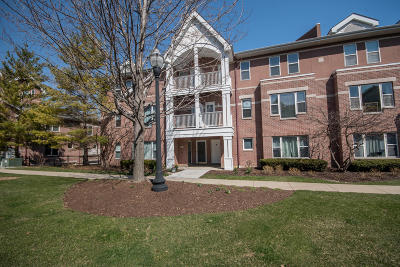 Kenosha Condo/Townhouse Active Contingent With Offer: 408 55th #408B