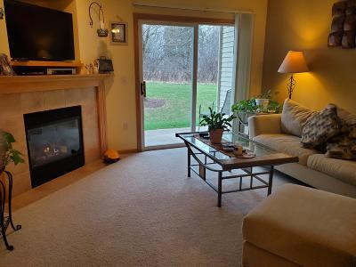 Washington County Condo/Townhouse Active Contingent With Offer: 850 Evergreen #6