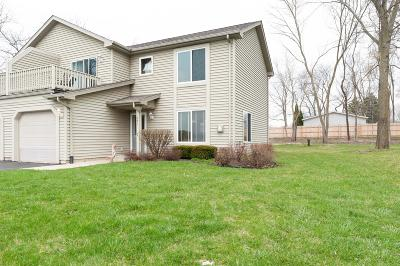 Kenosha County Condo/Townhouse For Sale: 681 N Cogswell Dr #2