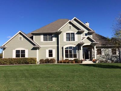 Mukwonago Single Family Home For Sale: 458 Ahrens