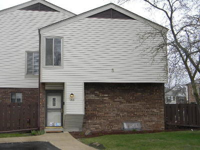 Kenosha Condo/Townhouse Active Contingent With Offer: 2908 14 Ln #6