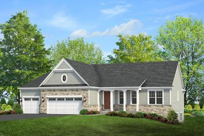 Kenosha County Single Family Home For Sale: 8909 257th Ave