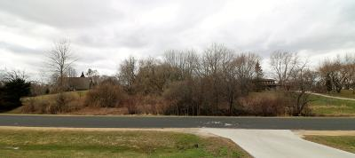Port Washington Residential Lots & Land For Sale: Lt1 Northwoods Dr