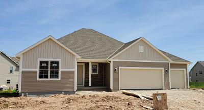 Ozaukee County Single Family Home For Sale: 1683 Willow Dr.