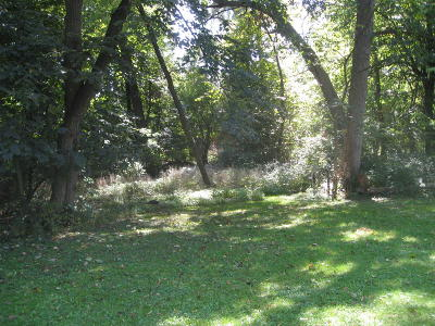 New Berlin Residential Lots & Land For Sale: Lt4 W Forest Dr